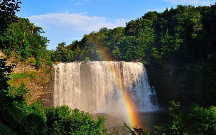 Wodospad, Tęcza, Drzewa, Las