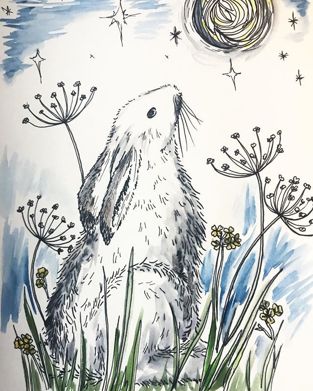 10. Alpine Hare  The first time ever drawing a hare! A little tricky but I do love a challenge for the weekend! Part of the #florafaunachallenge from @felicityandink - Created with ink and watercolours  . . . #hare #alpinehare #rabbit #drawing #handrawn #ink #artofinstagram #watercolour #design #designer #print #pattern #floral #flower #artist #instagram #spring #illustration #makersgonnamake #blue #moon #floralillustration #nature #stephaniecoletextiles