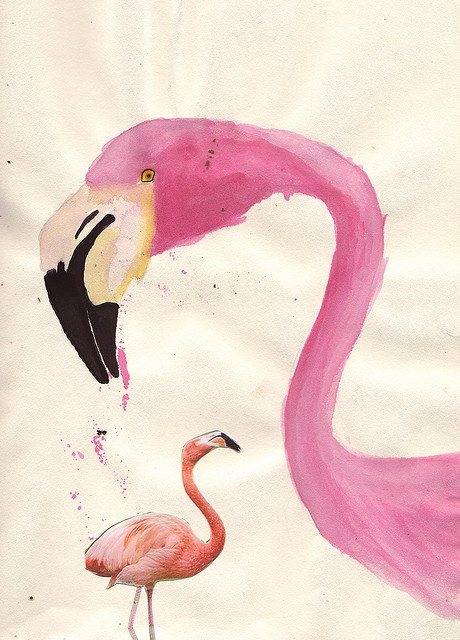 17 best images about flamingos on pinterest lawn for Flamingo feather paint
