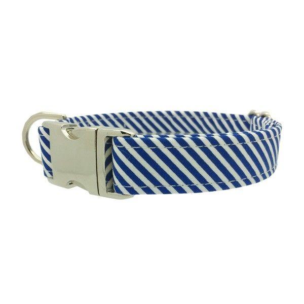 unieke hondenhalsband blauw kopen | blauwe hondenband | hondenwinkel