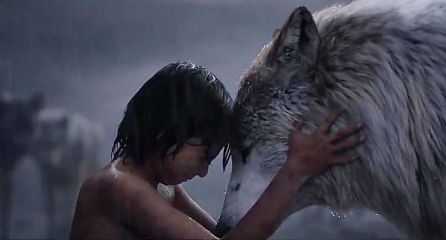 """VIDEO: International Trailer For Disney's """"The Jungle Book"""" Shows Some Alternate Glimpses at the Characters   WDW News Today"""