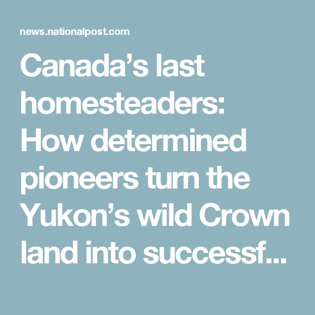 Canada's last homesteaders: How determined pioneers turn the Yukon's wild Crown land into successful farms   National Post