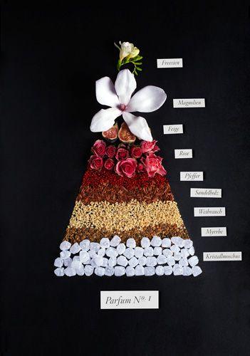 Scent pyramid #1 | »SÉVIGNÉ« PERFUM DUFTPYRAMIDEN by Sarah Illenberger