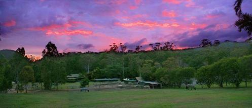 Dawn View at Cedar Creek Lodges in Tamborine Mountain http://ticketsandtours.com.au/accomodation/