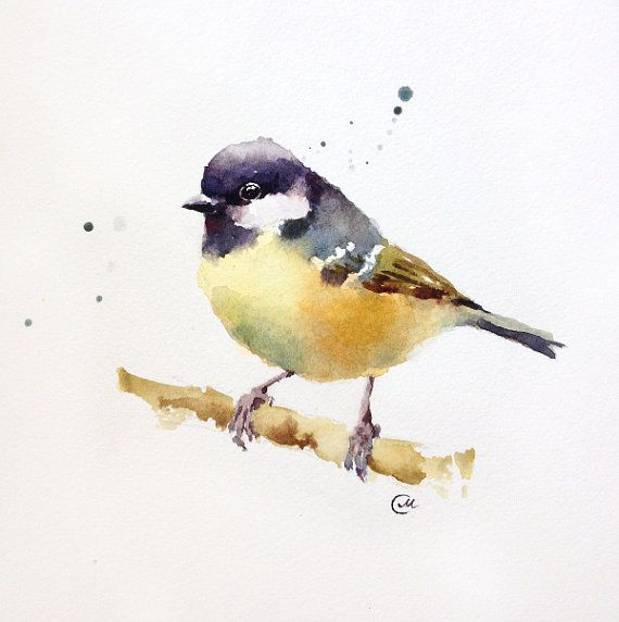 Watercolor Tit Bird  Original Painting 7 4/5 x 7 by CMwatercolors on Etsy