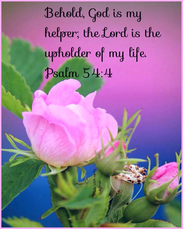 """Behold, God is my helper; The Lord is with those who uphold my life."" ‭‭Psalms‬ ‭54:4‬ ‭NKJV‬‬"