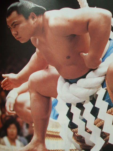 追悼 横綱千代の富士 SUMO YOKOZUNA CHIYONOFUJI
