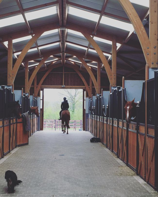 She shares beautiful photos and equestrian style daily. Roxanne is the woman behind the Instagram account, @roxanne.legendre and the creator of PegaseBuzz. Roxanne describes her equestrian style as casual. She rides for fun, but could easily spend a whole afternoon at the barn. When it comes to style Roxanne believes it all about being comfortable and enjoying a …