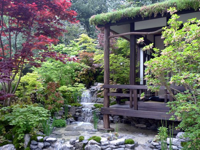17 best images about japanese gardens on pinterest for Flowers for japanese gardens