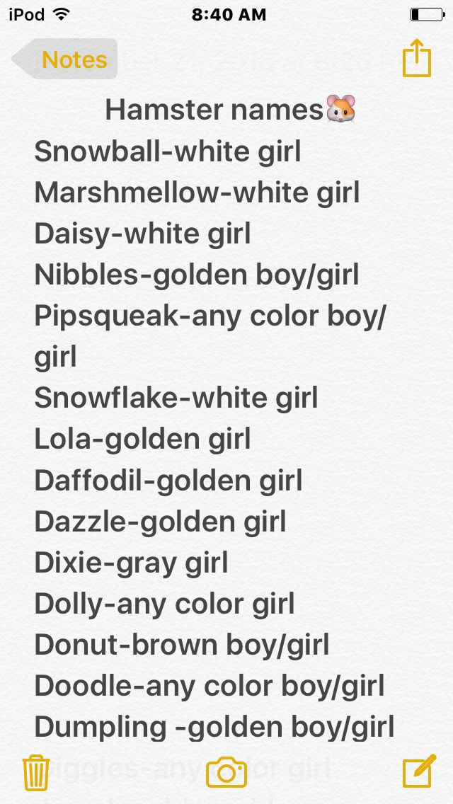 Hamster names what color I think they should be and weather it is a boy or a girl name.