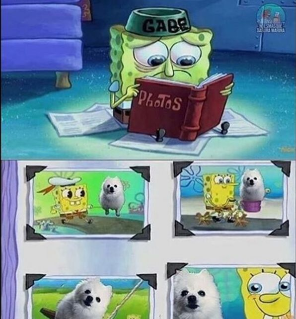 Gabe The Dog Will Be Missed ;(