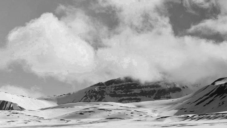Parkett Arctic collection Kapp Linn`e NORDIC FLOORING