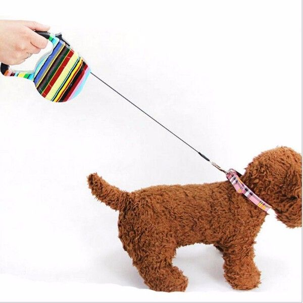 [~$8] 5M Automatic retractable Pet leashes Leads Walking P Chain Flat Rope Small Pet Multicolor dog leashes pet Supplies 12 Color 15kg