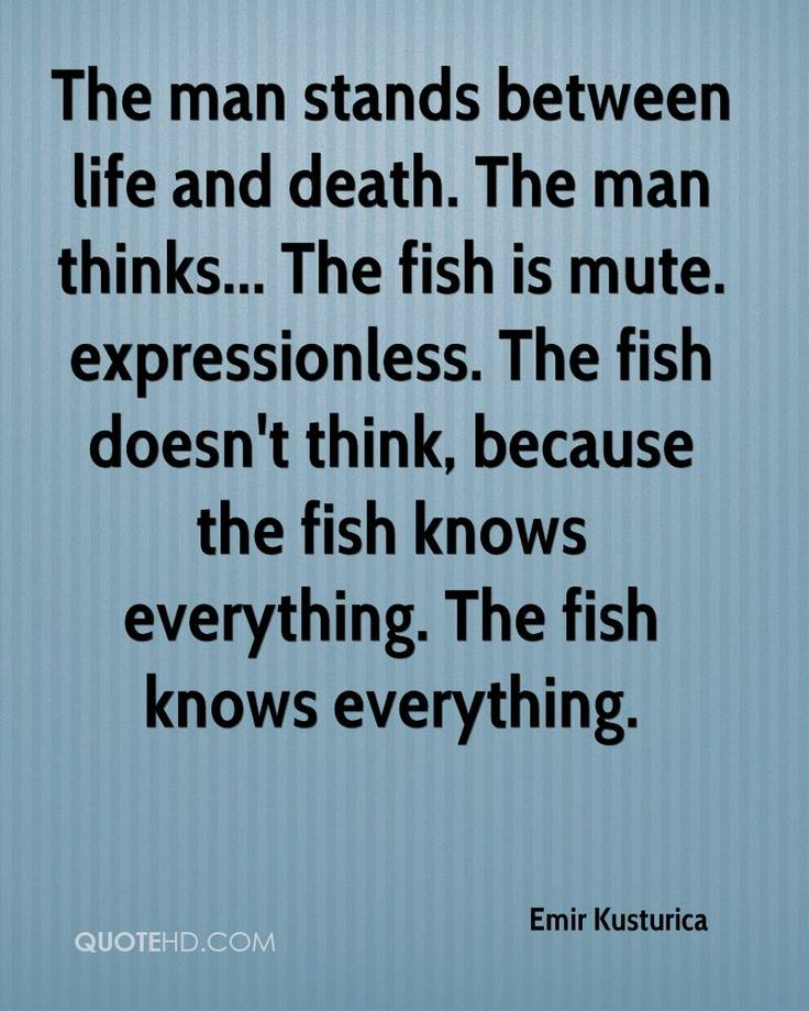 Emir Kusturica Quotes. QuotesGram by @quotesgram