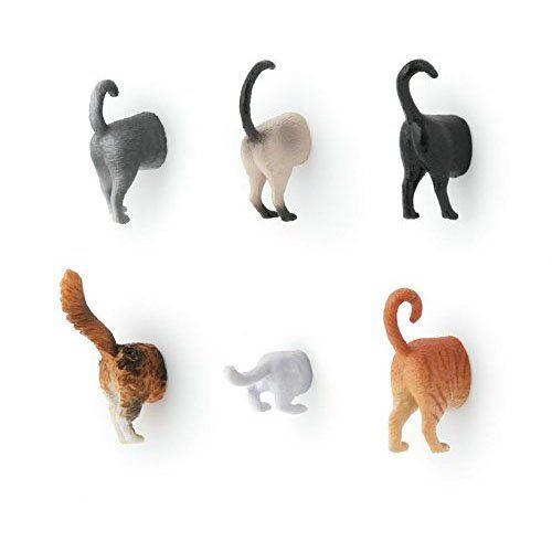 Kikkerland Cat Butt Magnets, Set of 6 (MG53) Kikkerland   http://www.amazon.com/gp/product/B00NZTJX56/ref=as_li_tl?ie=UTF8&camp=1789&creative=390957&creativeASIN=B00NZTJX56&linkCode=as2&tag=pieofscr0f-20&linkId=NH65GED4IACCLOYU