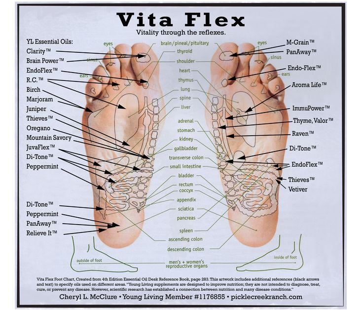 Vita Flex Foot Chart using Young Living Therapeutic Grade Essential Oils. Don't forget, you can put the oils on your feet. This should help anyone interested in finding a guide for what to put where on their feet. I have combined art from the Essential Oil Desk Reference Guide and the placement of YL oils which is helpful to me. Hope it's helpful to you as well. Happy Oiling! Young Living #1176855