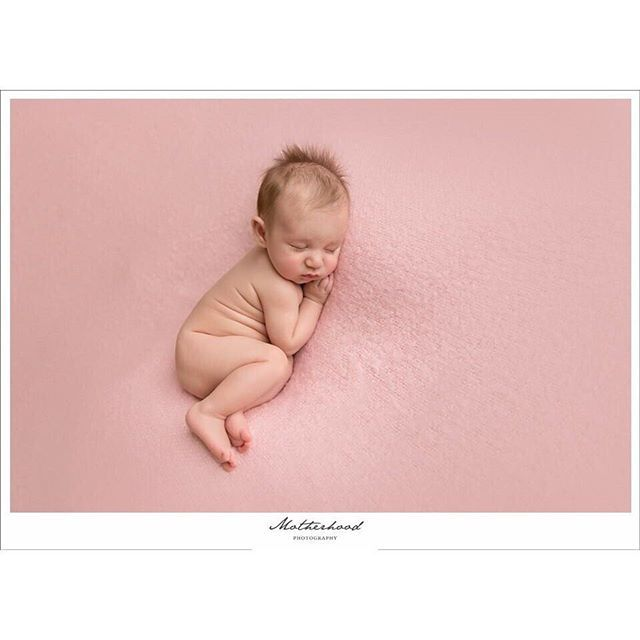 While the ideal timeframe for newborn photos is when baby is 6-12 days new, that does not mean that newborn-type photos cannot be achieved with older babies as well. With proper preparation it can be done.  8 week old River rocked her session! #baby #grandeprairiealberta #motherhoodphotography #portraitphotography #newbornphotography #newborn #pink #babygirl #canon