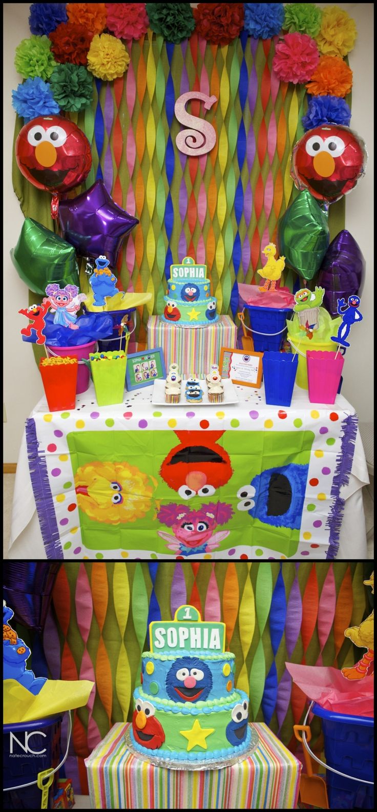 Elmo 1st birthday party ideas birthday party sesamestreet - Sophia S First Birthday Sesame Street Theme