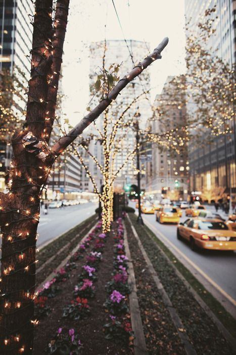 NYC streets lit for the holidays :-)