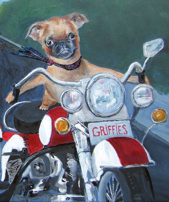 "Brussels Griffon Dog Art Print / ""The Wild One"" /by Original Mike Holzer on Etsy, $13.50"