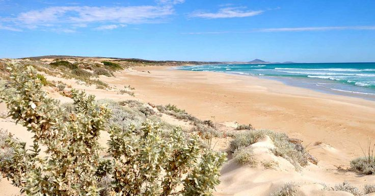 A fully-guided tour over two days and one night so you experience the beauty of Port Lincoln and Coffin Bay 'just like a local'.