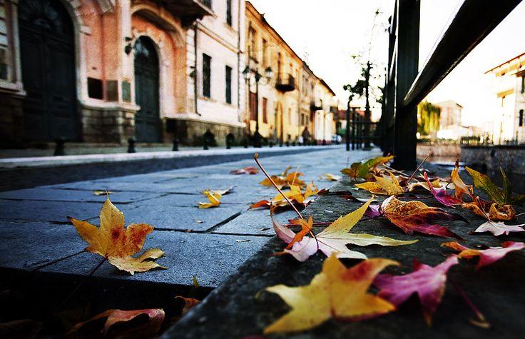 Autumn by Chris-Lamprianidis.deviantart.com on @deviantART