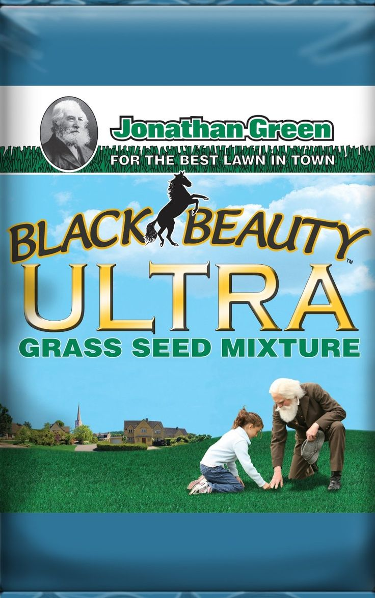 Best way to plant grass seed - Best Grass Seed Mix On Sale