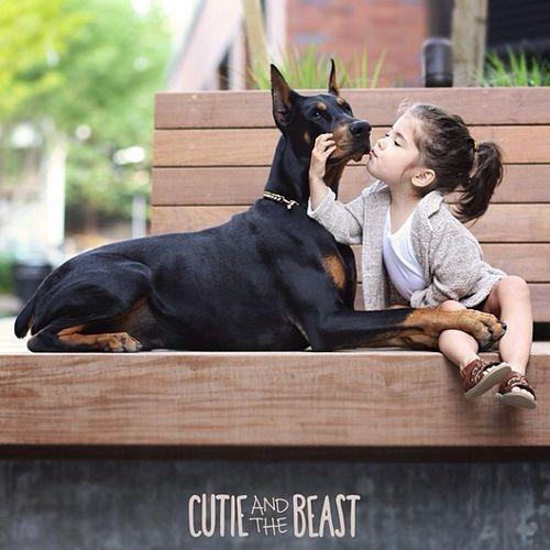 """Siena, hermosa niña de 3 años y Buddha, un extraordinario ejemplar de Doberman de 1 año. Más conocidos como """" Cutie and  the Beast """" ... a-do-ra-bles !!!!!"""
