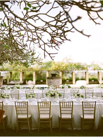 give us long tables, good company, and the shady trees:]: Wedding Tables, Outdoor Wedding, Outdoor Tables Sets, Banquet Tables, Wedding Reception, Chivari Chairs, Long Tables, Tables Decor, Outdoor Receptions