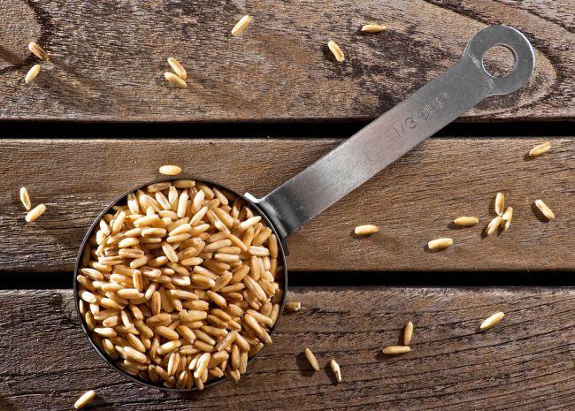Kasze pozyskuje się z ziarna zbóż całkowicie lub częściowo pozbawionego łuski oraz ewentualnie rozdrobnionego. Podobnie jak pieczywo, płatki zbożowe i makarony, kasze zalicza się do produktów zbożowych. Wartość odżywcza kasz zależy zarówn