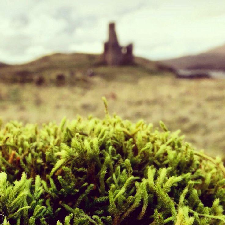 Ardvreck Castle, Assynt, Scottish Highlands