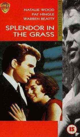Splendor in the Grass   ☆Natalie Wood   Pinterest ...  Splendor in the...