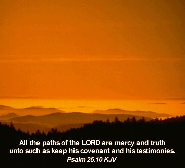 All the paths of the LORD are mercy and truth unto such as keep his covenant and his testimonies. Psalm 25:10