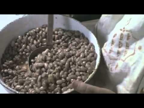 Aranyeső Yuccában (teljes film)