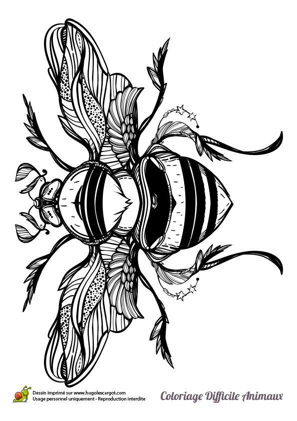 Ce dessin représente une abeille en plein vol, à colorier avec beaucoup de créativité