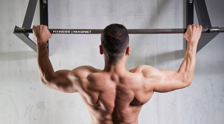 Klimmzüge sind die effektivste Art, mit denen die Rückenmuskulatur und die V-Form der Lat-Muskeln aufgebaut bzw. herausgearbeitet werden können.