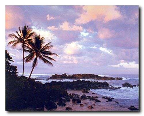 Feel the beauty of nature by bringing home this tropical sunset ocean palm tree landscape nature art print poster. This poster makes for a brilliant display and adds a unique charm in your living room or lobby area. Get up and grab this beautiful wall poster for its high quality paper with a high degree of color accuracy which ensures long lasting beauty of the product.