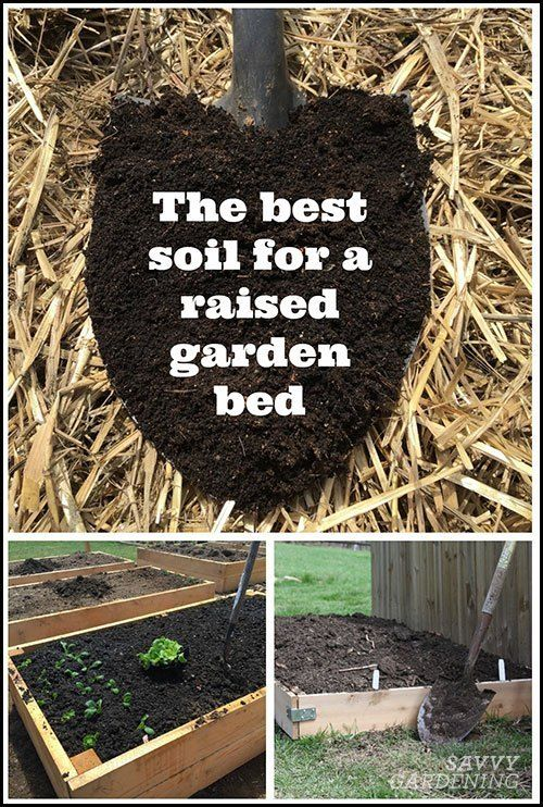 The Best Soil for a Raised Garden Bed Healthy Soil Equals