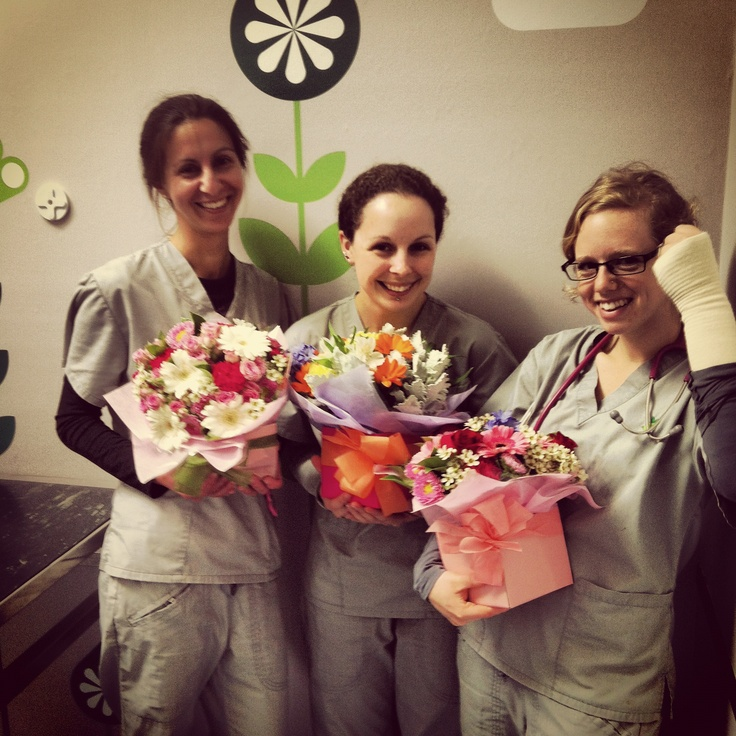 The super-nurses of North Ryde catch a little love for vet nurse day here in Australia.
