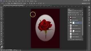Emulating Yvonne Todd's Rose Image...