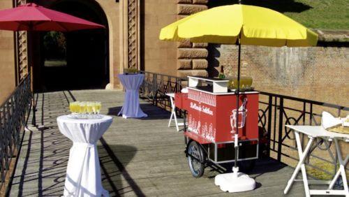 """Mit meiner """"Rollenden Sektbar"""" wird der Sektempfang bei Ihrer Hochzeit oder Familienfeier zu einem...,Sektempfang  Hochzeiten Familienfeiern mit Rollender Sektbar in Rheinland-Pfalz - Römerberg"""