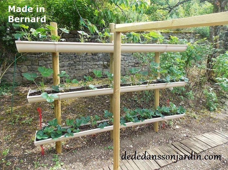 Dédé dans son jardin, blog jardin spécialisé en tomates: Comment faire pousser des fraises en hauteur ?