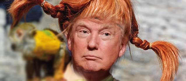 Image result for donald trump pippi longstocking wig