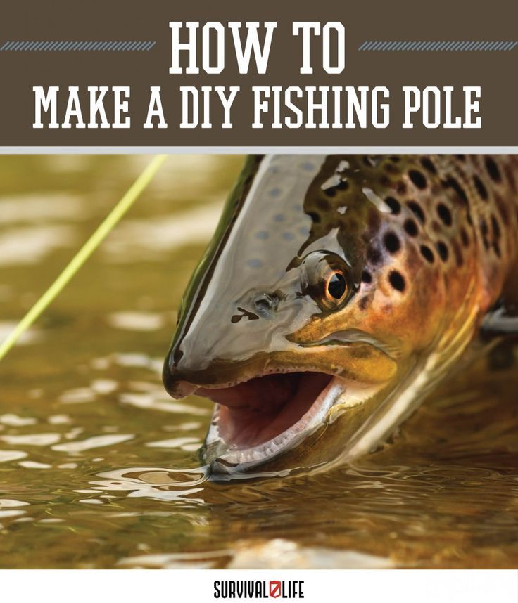 Hunting Food In The Wild | How To Make Fishing Pole When The SHTF by Survival Life at http://survivallife.com/2015/07/15/diy-fishing-pole-out-of-a-stick-diy-survival-gear/