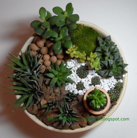 como fazer um mini jardim passo a passo - Pesquisa Google