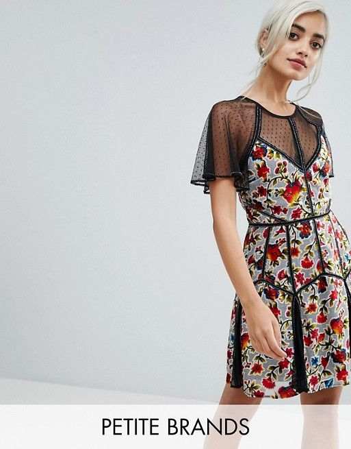 806489ce7 Frock And Frill Petite Floral Printed Velvet Mini Dress With Spotty Mesh  Detail | ASOS