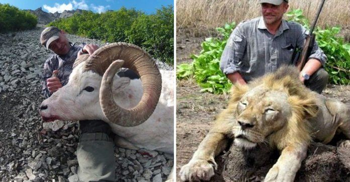 Vet Criticized For Hunting Large Game Animals Plunged To His Death While Shooting Birds - http://zogdaily.com/vet-criticized-hunting-large-game-animals-plunged-death-shooting-birds/