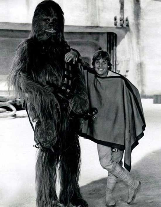 Peter Mayhew as Chewbacca and Mark Hamill | Rare and beautiful celebrity photos