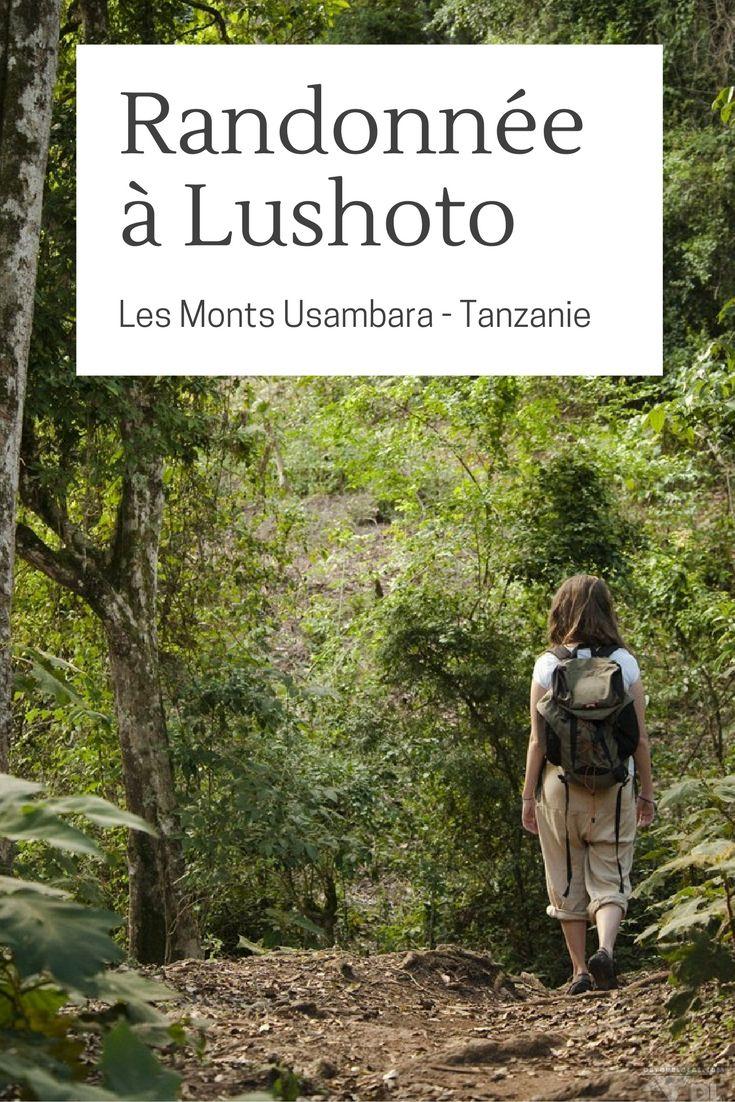 Séjour découverte rando en Tanzanie - Lushoto, et les monts Usambara