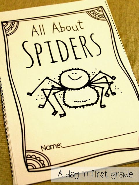 A spider reader your students will LOVE.